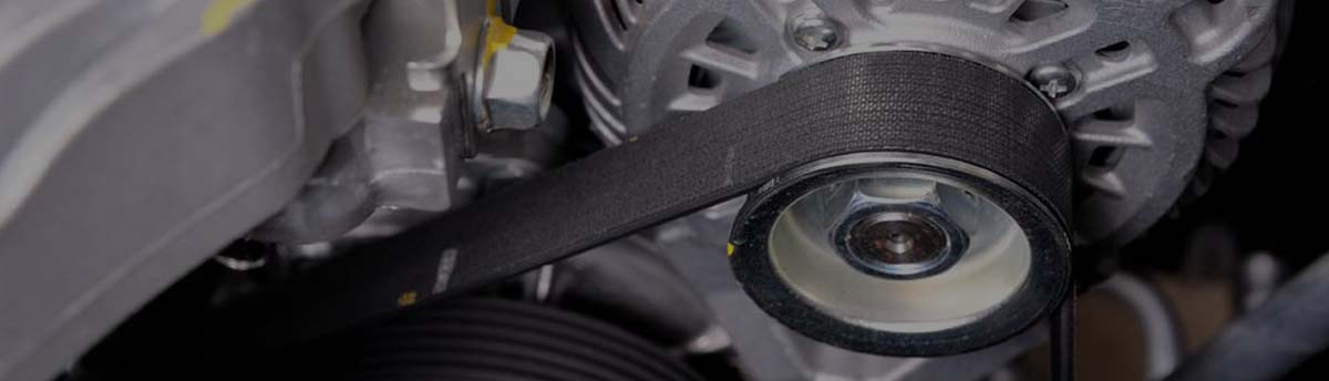 Cambelt timing belt Walsall Wood